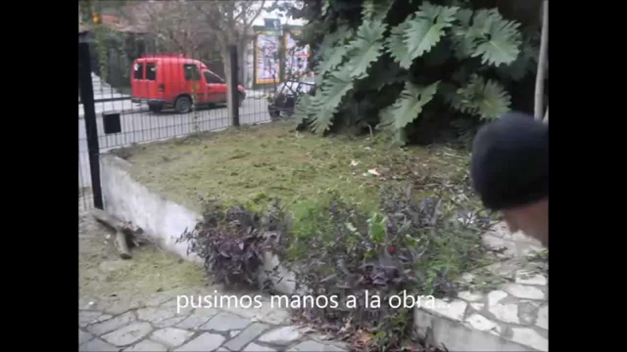 Vivero fleurs desmalezado y limpieza de jardin abandonado - Arreglar jardin abandonado ...