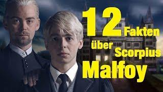 12 FAKTEN über Scorpius MALFOY