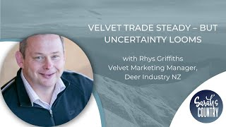 """Velvet trade steady – but uncertainty looms"" with Rhys Griffiths"