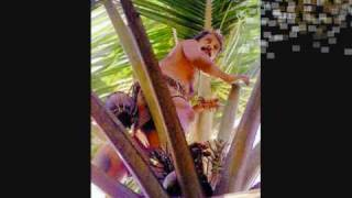 Malayalam Theri Song - Chandanamani Praja