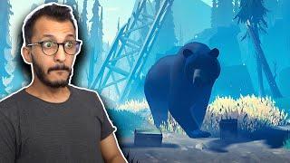 بين الأشجار #2 | مواجهة الدب النكبة!