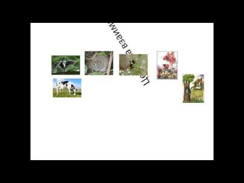 Презентация сказки на 2-х языках Мамонтенок Мэник