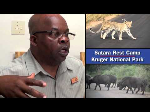 ILO SCORE Training Impact: Case Study Kruger National Park, South Africa