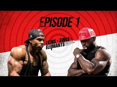 Lions, Owls & Elephants Episode 1  Mike Rashid & Simeon Panda
