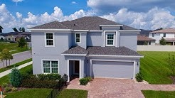 Clermont/Groveland New Homes - Cypress Oaks by Hanover Family Builders - Newcastle Model