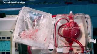 AMAZING Living Human Heart in Box! Medical Breakthrough 2017