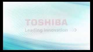 Toshiba VIPedge Programming Buttons