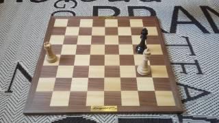 Как поставить мат королём и ладьёй. Шахматы. Урок 10.