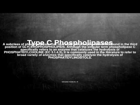 Medical vocabulary: What does Type C Phospholipases mean