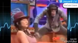 Monyet Nakal pegang payudara cewek