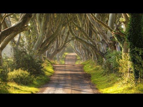 Instrumental Celtic Music, Traditional Irish Music