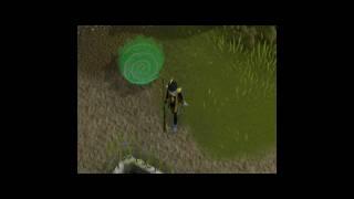 - Lvl3 sk ll aka Yannick -  9800/9800 Zeals !! (99 Slayer). legit
