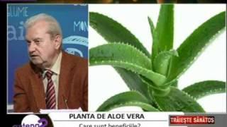 Aloe Vera Gel cu prof.dr. Gheorghe Mencinicopschi Menci Sanatate Prosperitate Forever Living FLP RO