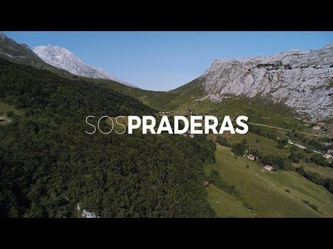 SOS Praderas: modernizando manejo tradicional prados de siega hacia conservación naturaleza