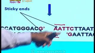 Guru Gedara - Biology | 2020- 10 -12|Rupavahini Thumbnail