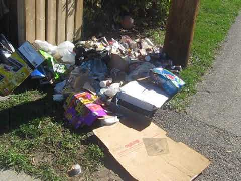 Edmonton Garbage Problem Need Fines Handed Out