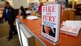 Michael Wolff's Trump tell-all 'full of lies': David Bossie