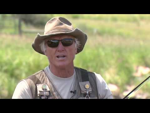 Greg Norman Life Lessons