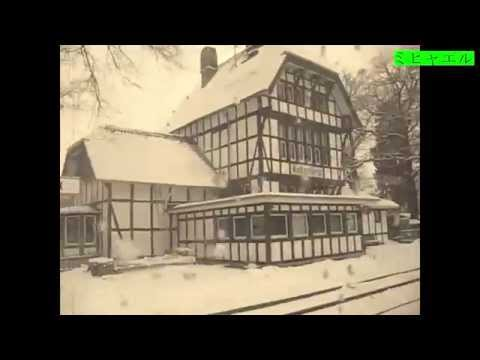 A Stop In The Forest - The Kottenforst Train Station near Bonn, Germany / HD