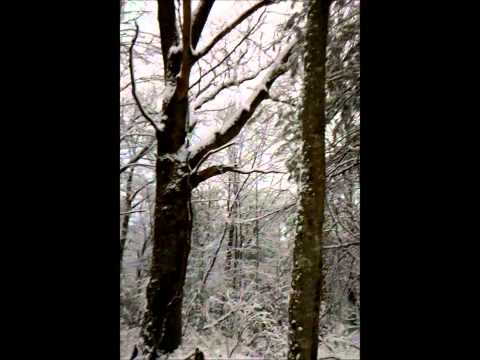 Snow in Mitchell County, NC