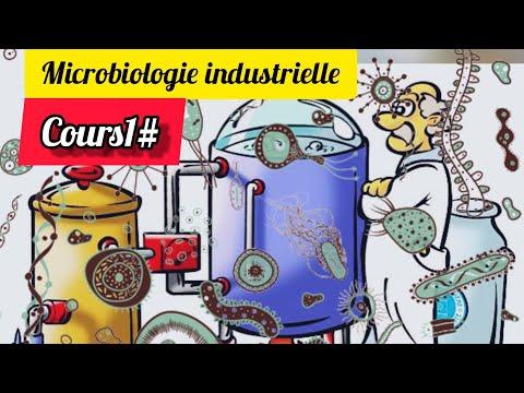 Microbiologie industrielle#1# la biomasse vs métabolites 🤔⚠️مهم جداااا
