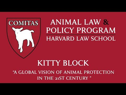 Animal Law Week | A Global Vision Of Animal Protection In The 21st Century