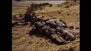 Alien Cities AND UFO Found On Venus IS 100% Proof Venus Is Inhabited Now