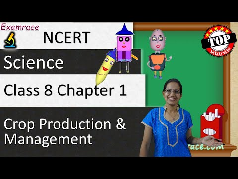 NCERT Class 8 Science Chapter 1: Crop Production & Management (NSO