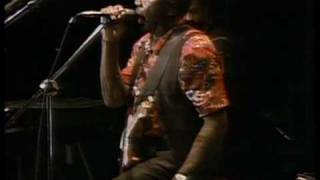 Muddy Waters - Trouble No More - ChicagoFest 1981