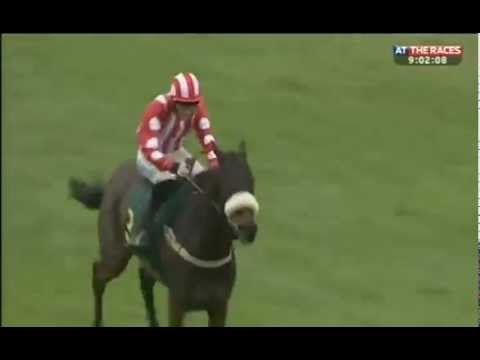 Fakenham fiasco: Jockey takes wrong course
