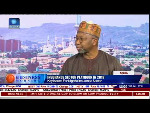 Analysing State Of Insurance Sector With NAICOM Commissioner Kari Pt.1 |Business Morning|