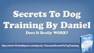 Secrets To Dog Training Daniel Stevens Review - Secrets To Dog Training Online