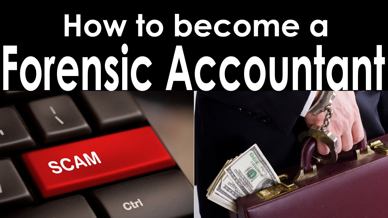 How To Become A Forensic Accountant?  Youtube. Nutrition Certification Programs Online. What Degree Is Needed To Become A Psychologist. How To Setup Smtp Server Secure Sockets Layer. Certified Medical Assistant Programs. Lawyers In Panama City Fl Free Ads In Nigeria. Business School Colorado Chunky Diamond Rings. Best Battery Life Laptop Collett & Associates. Elearning Software For Mac Legal Search Firm