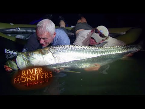 Catching A Large Tarpon - River Monsters