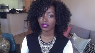 KINKY CURLY WIG: THE LAJAY WIG| Great Protective Style for Natural Hair