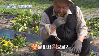 [역전의 부자농부] 유…