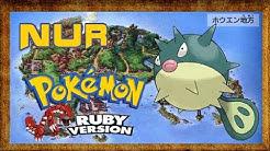 Kann ich Pokémon Rubin mit nur einem Baldorfish durch spielen