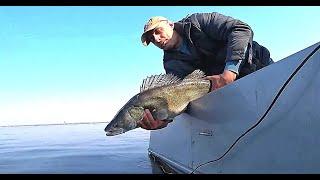 Два заброса на 15 кг. Да сколько же здесь Рыбы?