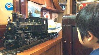 鉄道模型のSLがカレーを運ぶ店 ナイアガラに行きました【がっちゃん5歳】 thumbnail