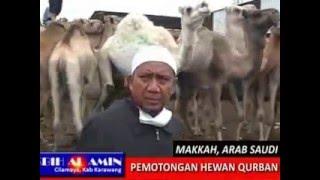KBIH AL AMIN CILAMAYA - TEMPAT PEMOTONGAN HEWAN QURBAN