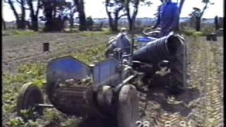 Ferguson TEF & Dettmann potato digger