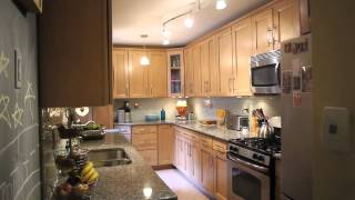 Stunning Two Bedroom Co-op In Forest Park, Woodhaven!