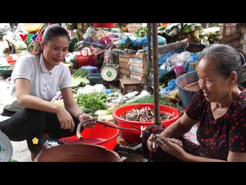 Du lịch & ẩm thực - Quảng Trị  - Đất lửa nở hoa