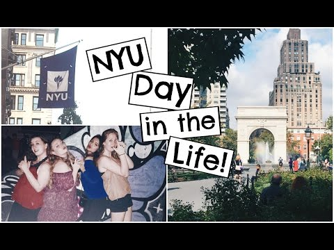 A Day in the Life of an NYU Student 2016!