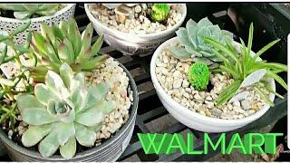 WALMART SHOP WITH ME | GARDEN | CLEARANCE | SUMMER | 2018