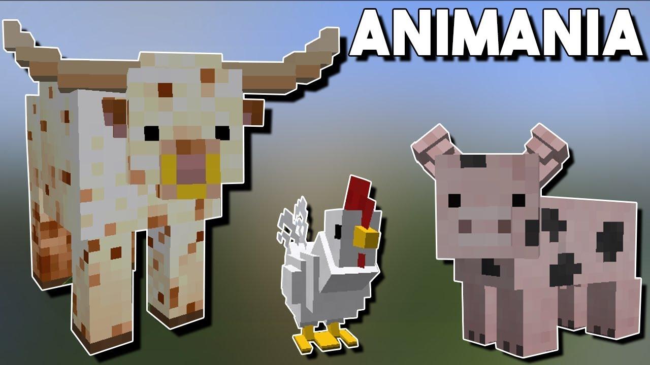 Animania - cinemapichollu
