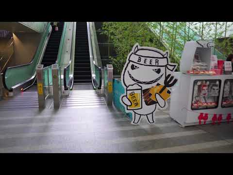 Taiwan, Taipei City Mall / Main Station - Taoyuan Airport MRT, 14X escalator, 4X elevator