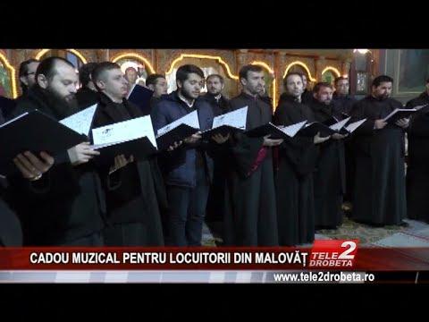 CADOU MUZICAL PENTRU LOCUITORII DIN MALOVat