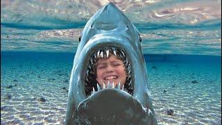 HO MANGIATO DA UN HUMONGOUS SHARK!!! | Morso di squalo di Roblox (Beta)