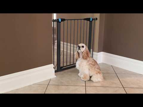 assembly video glow in the dark steel pet gates by midwest homes for pets
